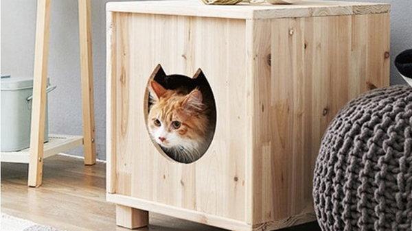 Домик для любимой кошки сделать просто