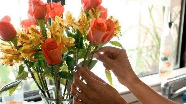 Как продлить жизнь цветов