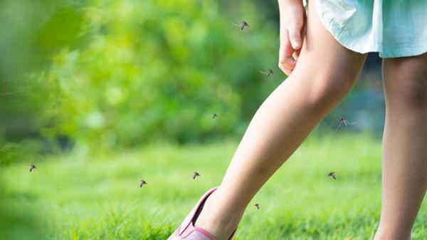 Способы помощи после укусов комаров