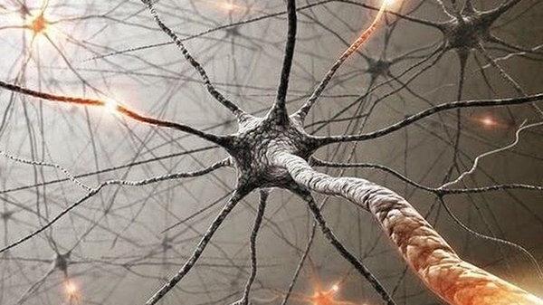 Тренируйте свой мозг, чтобы избавиться от вредных привычек