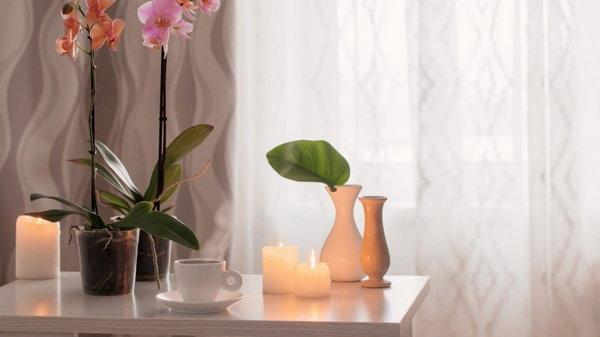 В каких случаях орхидею стоит вынести в подъезд