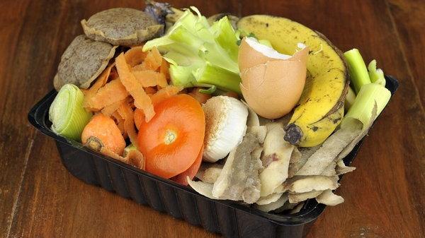 Миф о скорлупе и кожуре. Можно ли из пищевых отходов получить удобрение?