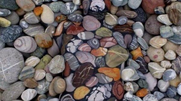 Среди камней и листвы отдыхает живая женщина…