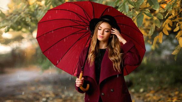 Как выбрать зонт от дождя