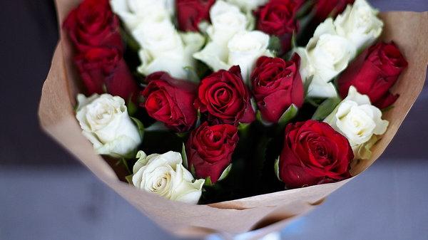 Что означают цвета роз?
