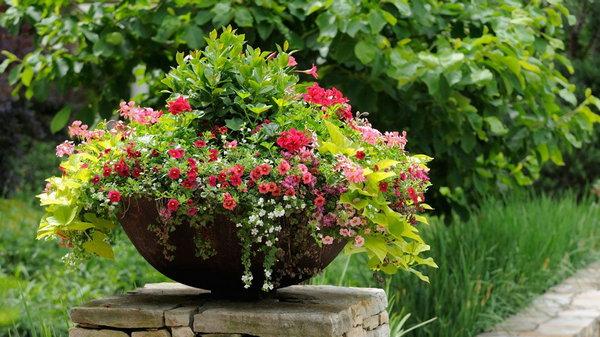Как создать клумбу из садовых горшков