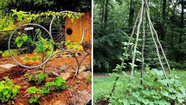 Лучшие способы создания подпорок для обустройства грядок на даче и огороде