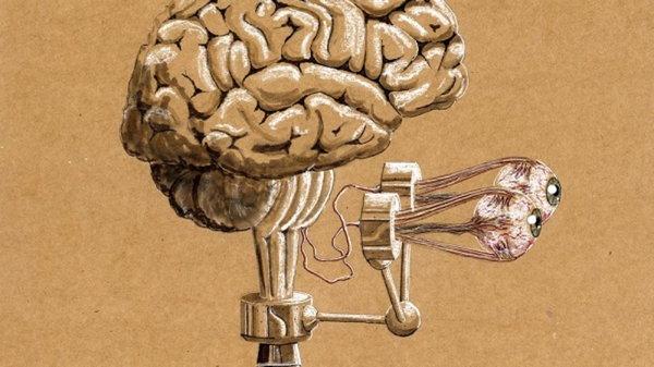 Как мозг убивает новые идеи и что с этим делать