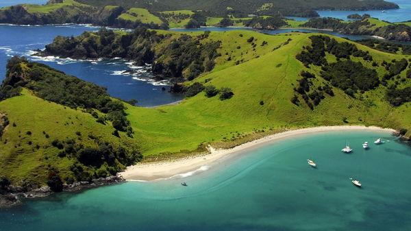 Почему стоит отдохнуть в Новой Зеландии?